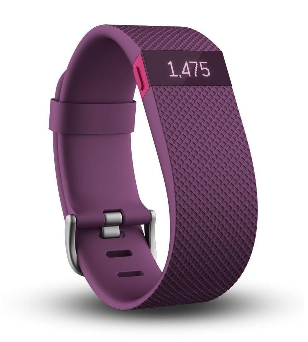 Fitbit-FB405PMS-1.jpg