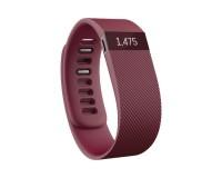Fitbit-FB404BYL-1.jpg